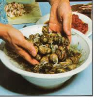 limpieza de caracoles